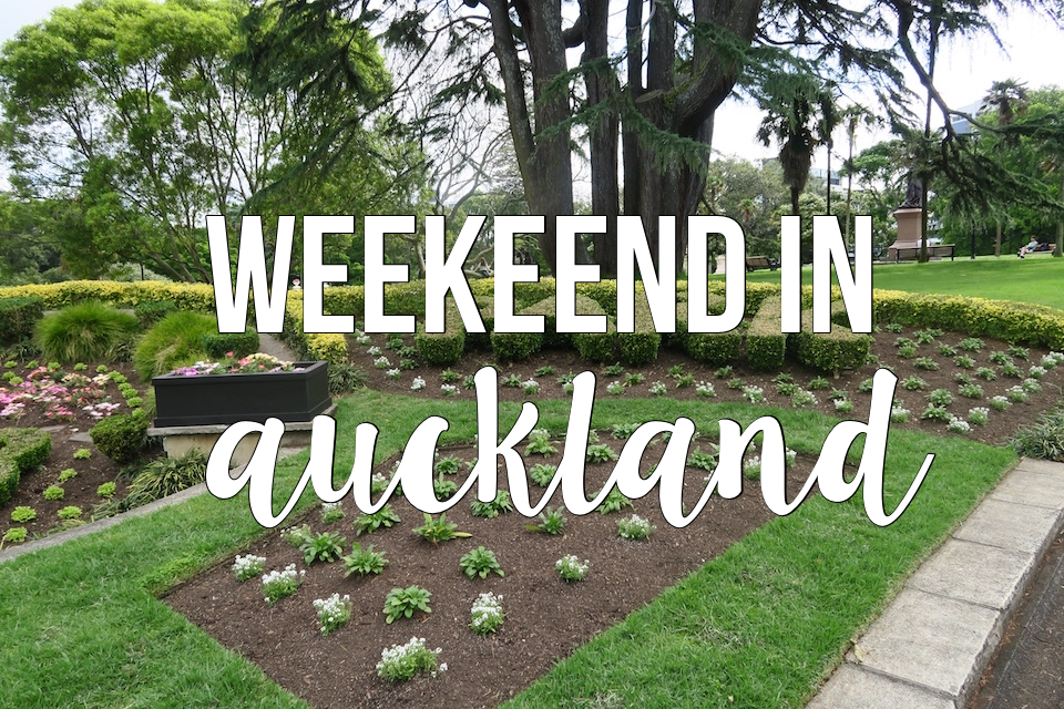 weekend in auckland