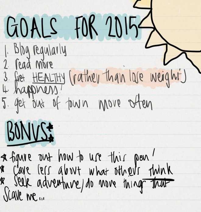 My 2015 Goals Update