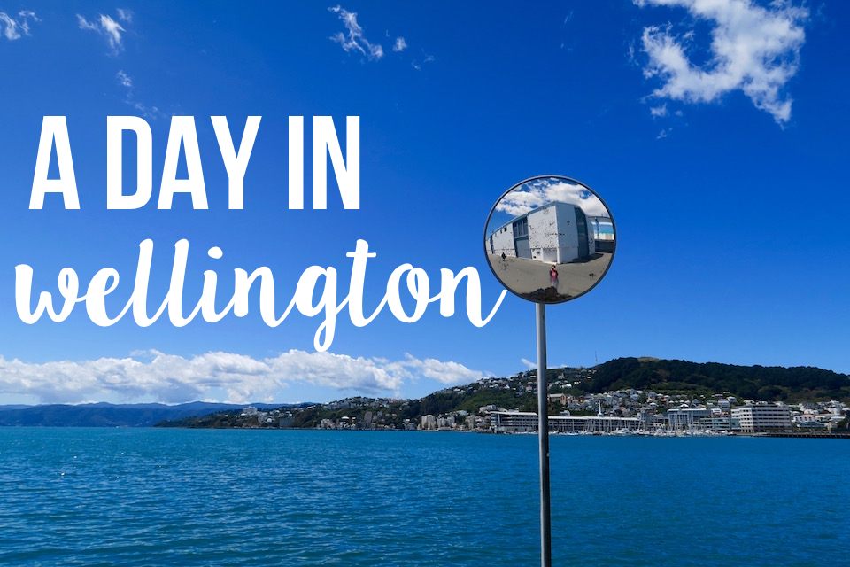 A Day In Wellington